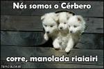 cerbero1